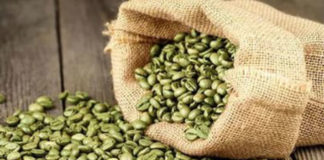 Как влияет на здоровье зеленый кофе