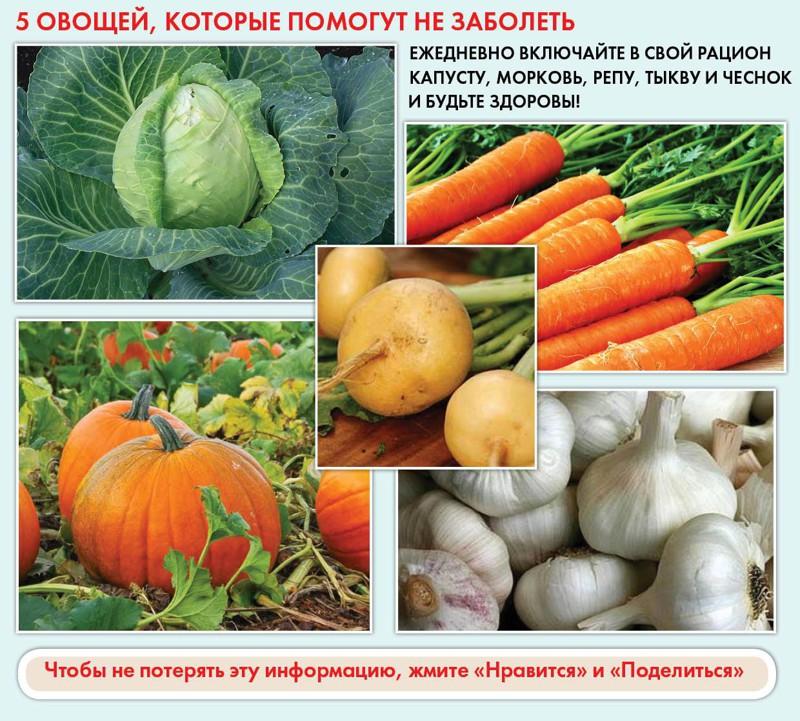 interesnoe25-ochen-poleznyx-kulinarnyx-shpargalok-na-kazhdyj-den-dlya-xozyaek-i-ne-tolko2