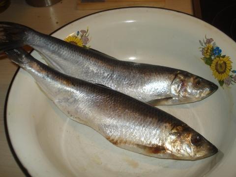 """Рыба """"Хе"""""""