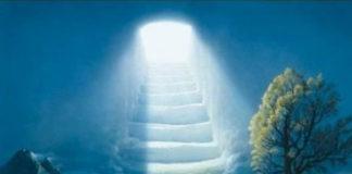 Смерти нет – не том свете тоже кипит жизнь