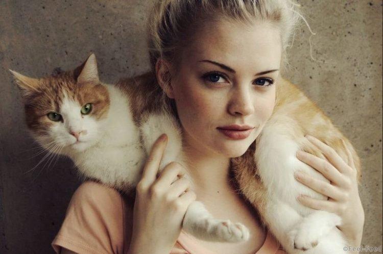 Именно от кошки зависит ваше благополучие. Не удивляйтесь, это правда