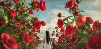 Очень красивое стихотворение «Все в этой жизни случается к лучшему…»