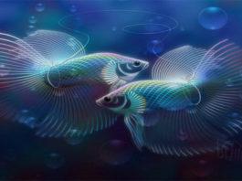 Рыбы — самый сложный знак зодиака для понимания, узнайте почему
