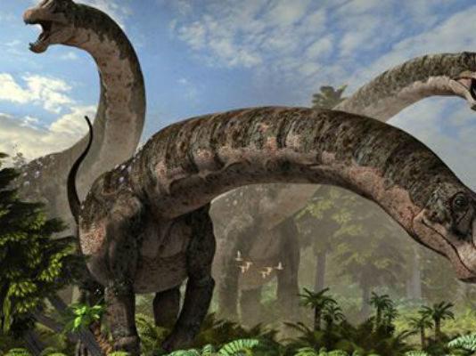Долина динозавров в Монголии вновь порадовала ученых великолепной находкой