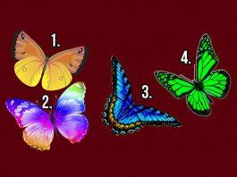Нажмите на бабочку, которая вам пригляделась и узнайте тайны своей души